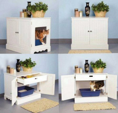 Great Decration Ideas For Cat Lovers